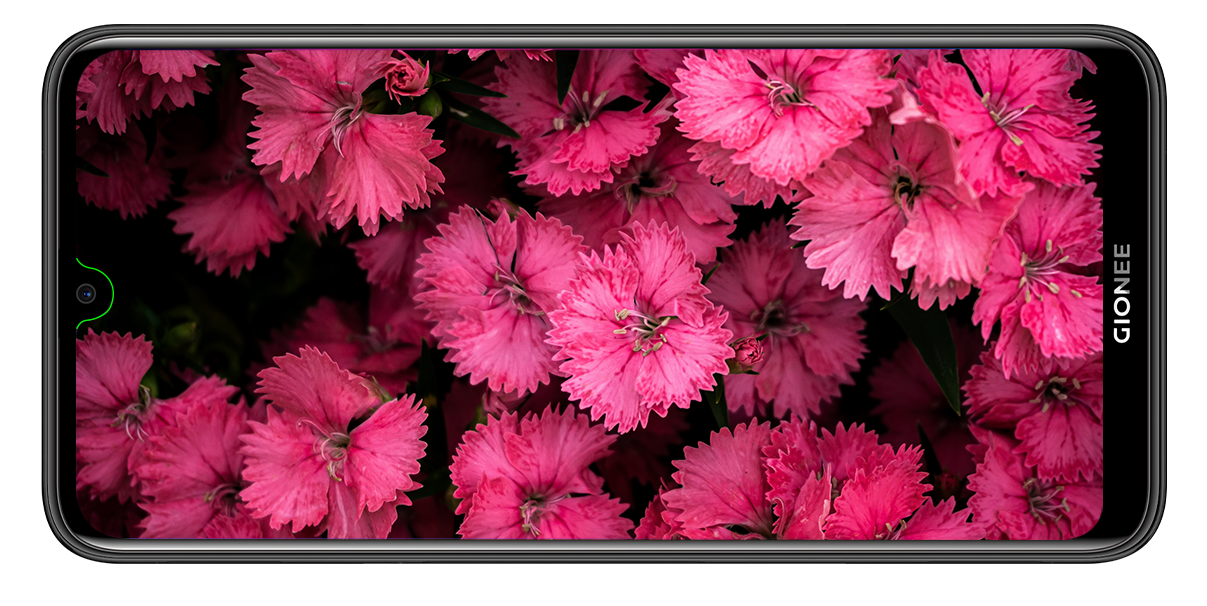 Gionee F9 Plus Display