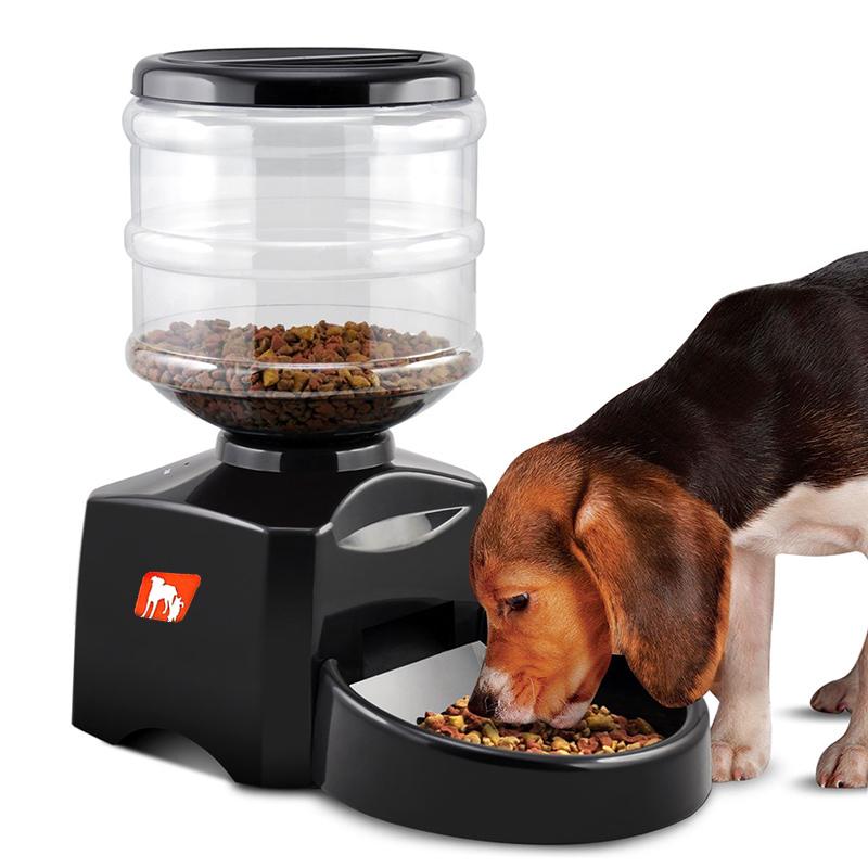 Automatischer Hundefutterautomat