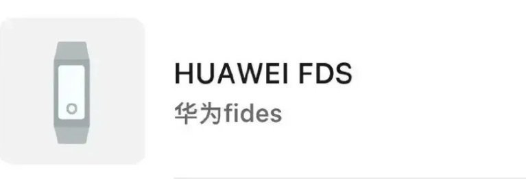 """Huawei """"Fides"""" Smartband"""