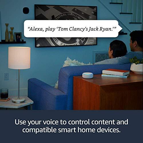 Fire TV Stick 4K Bundle mit Echo Dot (3. Generation - Holzkohle)